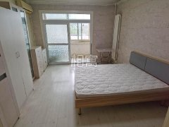 北京朝阳柳芳和平里砖角楼北里3居室主卧出租房源真实图片