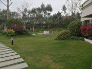 恒地悦山湖花园