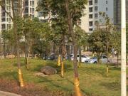珠江愉景新城