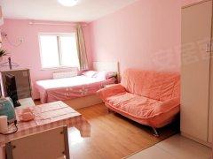 北京丰台宋家庄鸿程公寓 1室0厅1卫 2900元月 配套齐全 精装修出租房源真实图片