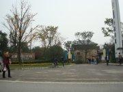 龍湖小院青城
