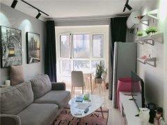 北京昌平回龙观回龙观中心位置 上北小区 一居室 精致优雅干净出租房源真实图片