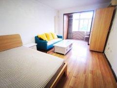 北京朝阳劲松10号线 地铁   精装一居室  随时看房出租房源真实图片