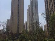 金科天籁城