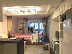 北京朝阳朝青板块正南 1室1厅  珠江罗马嘉园(西区)出租房源真实图片
