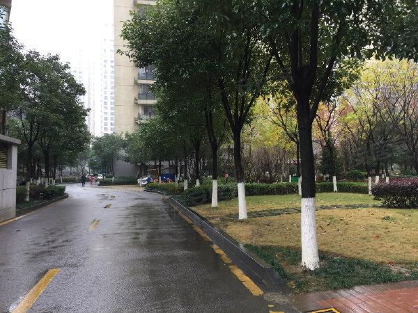 中国铁建国际城水岸中区户型图实景图片
