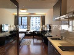国贸世界城 豪华开间 本房实拍 随时看房 随时入住 家私齐全