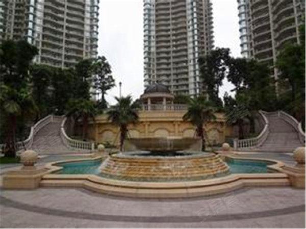 棕榈泉国际公寓户型图实景图片