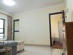 樟木头 南城新区 香樟半岛 一房一厅 电梯房 急租 拎包入住