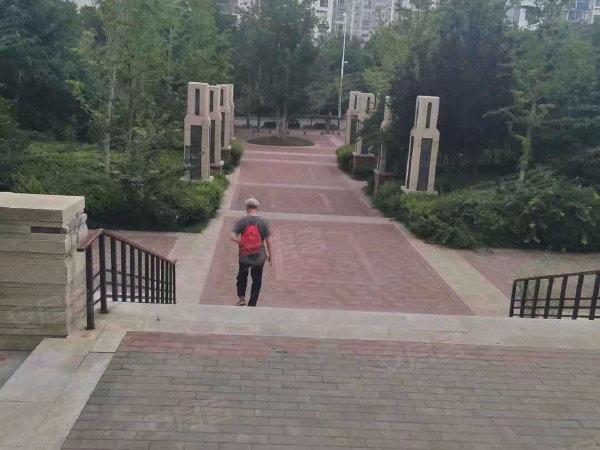 鲁能领秀城中央公园户型图实景图片