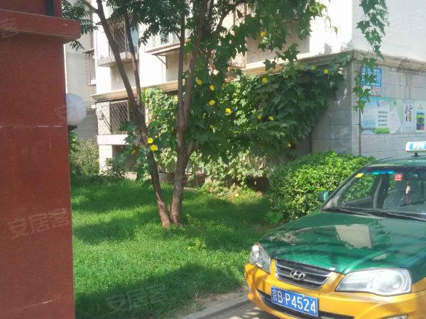 小街之春嘉园户型图实景图片