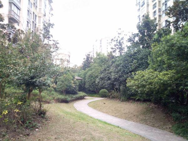 绿地崴廉公寓户型图实景图片