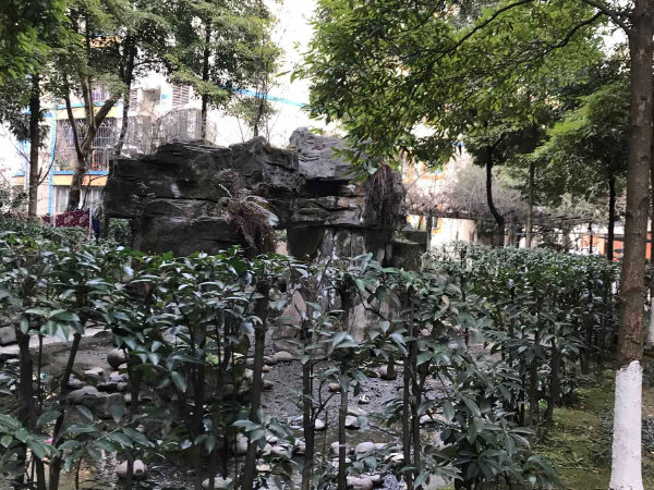 滨河花园春风苑户型图实景图片