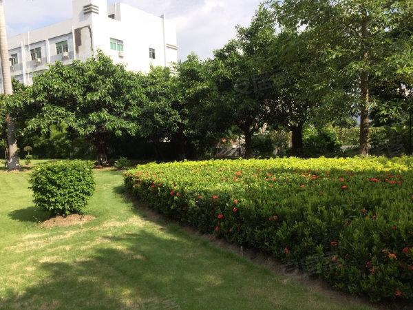 怡景花园户型图实景图片