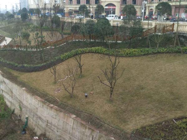 中迪广场户型图实景图片