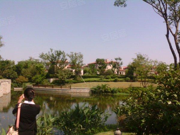 长泰淀湖观园(别墅)户型图实景图片