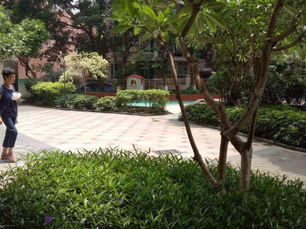 保利百合花园二期户型图实景图片