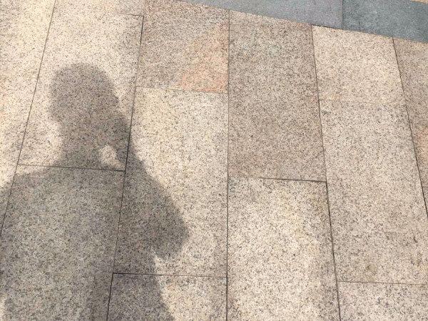 天嘉水晶城户型图实景图片