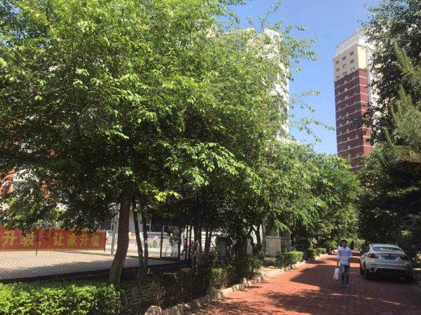 亚泰花园桃花苑户型图实景图片