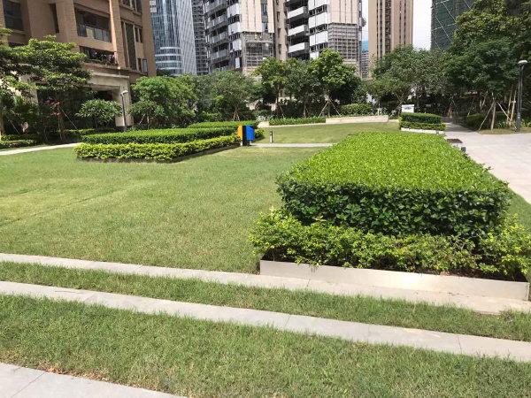 大冲城市花园户型图实景图片