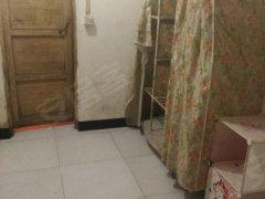 南京东路药检所宿舍1室-0厅-1卫整租