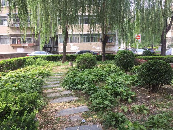 南湖东园(二区)户型图实景图片