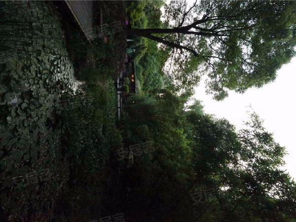 绿城春江花月户型图实景图片