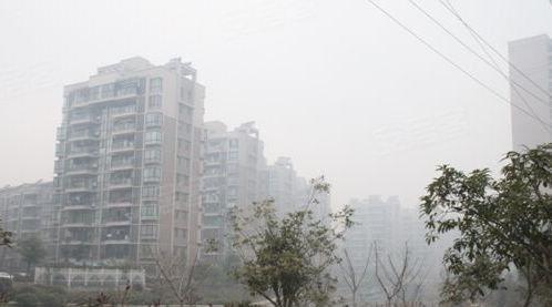 金河新村户型图实景图片