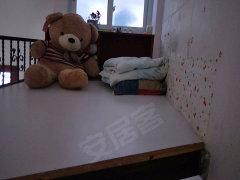 雪梨星光单身公寓1室-1厅-1卫整租