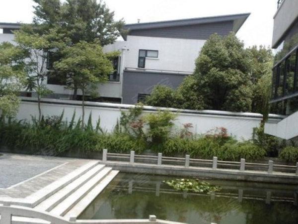 上海院子(别墅)户型图实景图片