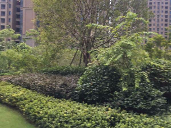 康城国际户型图实景图片