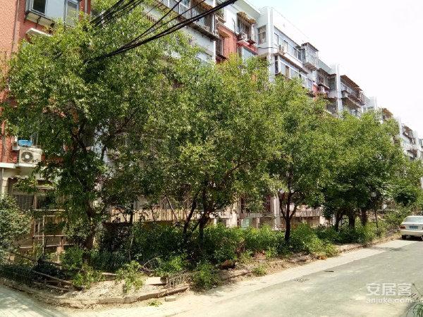 津涞花园户型图实景图片