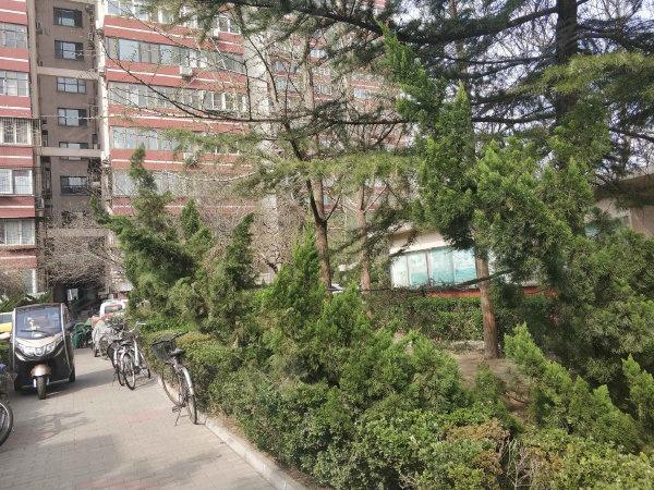 铁道部第二住宅区北区户型图实景图片