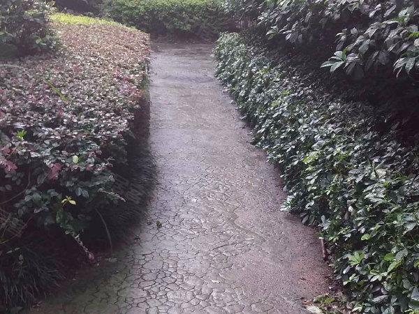家和花园北区户型图实景图片