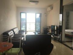 凤岗镇中心 沃尔玛旁 锦龙精装两房 拎包入住 繁华 方便