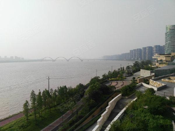北辰定江洋户型图实景图片