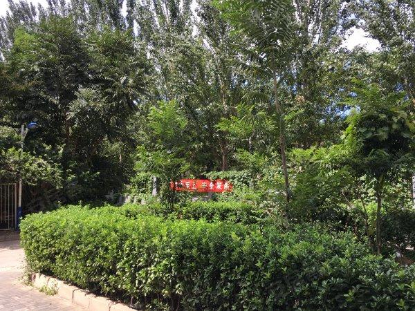 垡头翠成馨园(B区221-239号)户型图实景图片