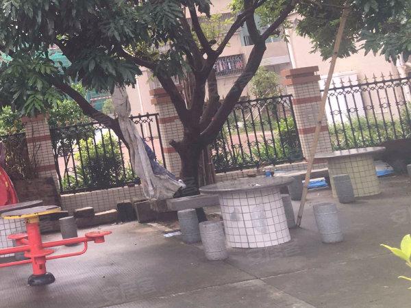 艺华花园户型图实景图片