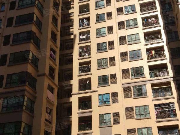坦洲镇东城四季户型图实景图片