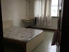 青春家园1室-0厅-0卫合租
