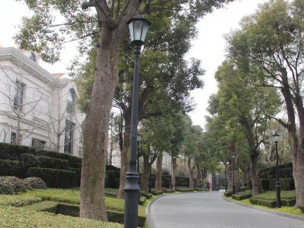 华洲君庭户型图实景图片