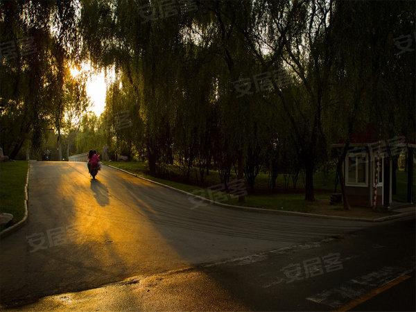 思念果嶺國際社區戶型圖實景圖片