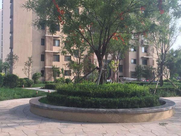 欧铂城小区户型图实景图片