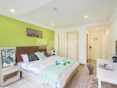 橘园洲 单身公寓 套房年底房东降价出租 随时入住