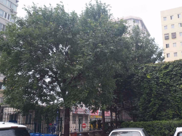 双城公寓户型图实景图片
