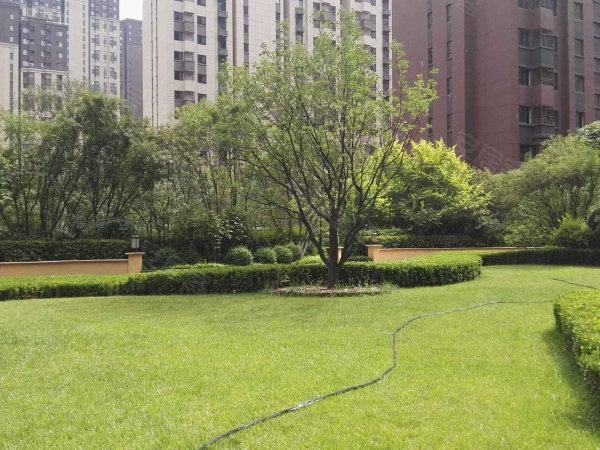 华远海蓝城五期户型图实景图片