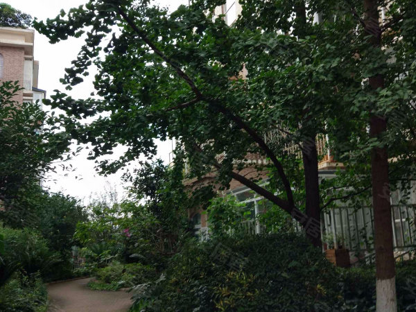 华尔兹花园户型图实景图片