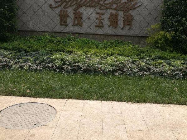世茂玉錦灣戶型圖實景圖片