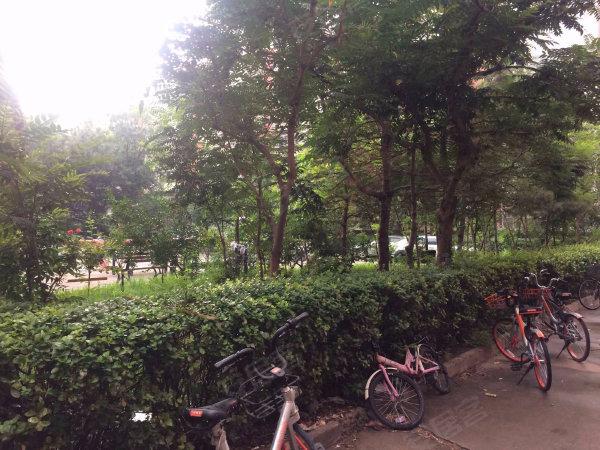 定福庄西里1号院户型图实景图片