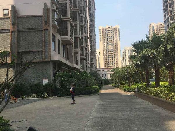 椰海新城户型图实景图片
